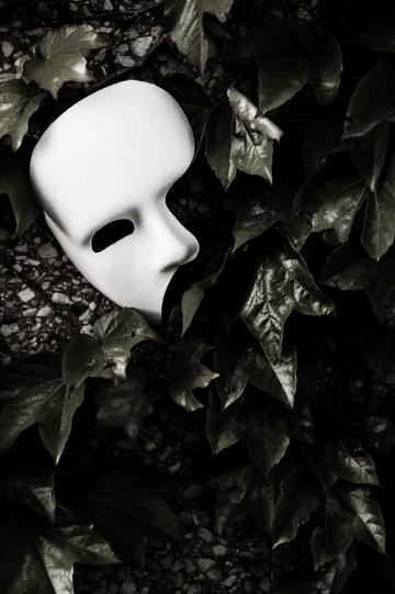 Masquerade - Phantom of the Opera Mask on Ivy Wall